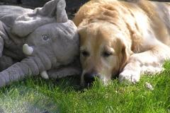 Samen met grote vriend Ollie