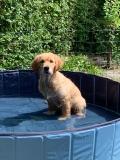 Mijn eigen zwembad
