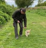 Eerste puppy jachttraining